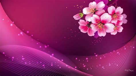 dark pink wallpapers hd pixelstalknet