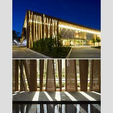 Arboreal Architecture Taking Inspiration From Trees
