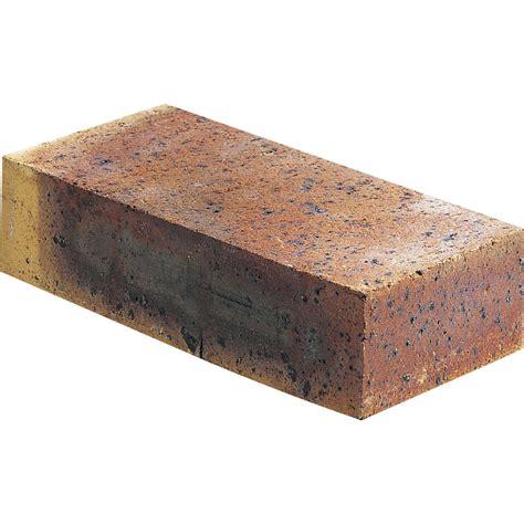 Brique Pleine Léopard, 5.4x10.5x22 Cm