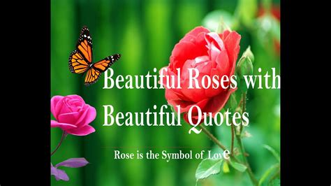 symbol  love heart touching quotes beautiful roses