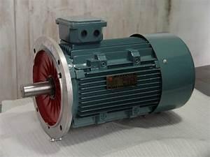 Tesla U0026 39 S Ac Induction Motor