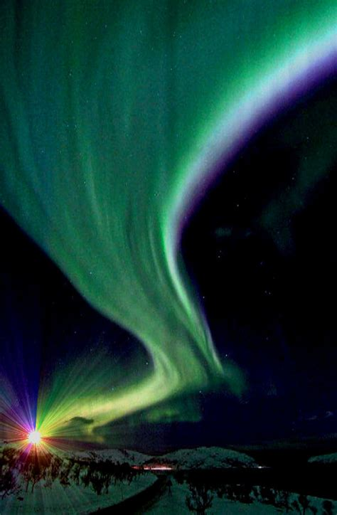 northern lights alaska cruise what you can see when discovering alaska
