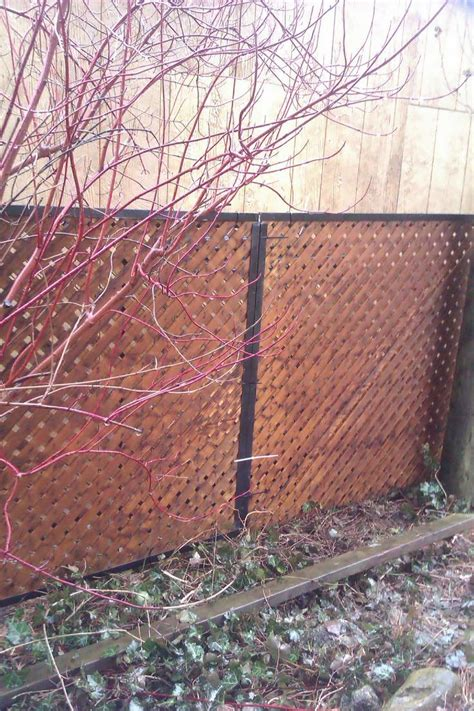 chain link fence privacy ideas chain link fence privacy ideas fence ideas