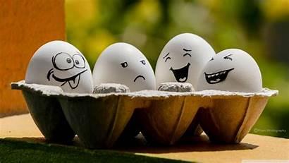 Funny Eggs Wallpapers Desktop 4k Uhd Mobile
