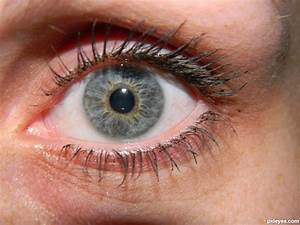 My Eye picture, by kimlandsiedel for: eye closeup 2 ...