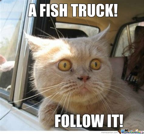 Fish Memes - a fish truck by nightbreed meme center