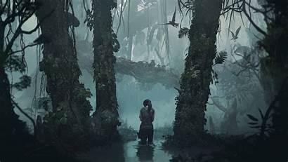 Tomb Raider Wallpapers Shadow 4k Ultra Gameranx