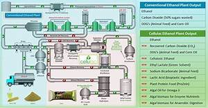 High Corn Crush Margin Ethanol Plant Solution