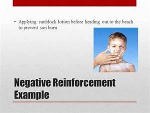 Operant Conditioning: Positive and Negative Reinforcement ...