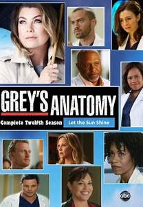 Grey's anatomy download or watch online