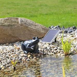 Pompe Pour Jet D Eau Fontaine : pompe fontaine solaire jet d 39 eau grenouille np9 pompes ~ Premium-room.com Idées de Décoration