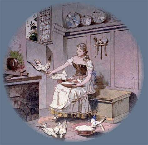 les besoins d un pigeon de compagnie vivant dans une maison soins d un pigeon en famille d