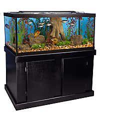 marineland  gallon aquarium majesty ensemble fish
