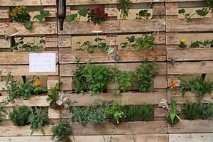 Mur Végétal En Palette : mur vegetal avec palette sofag ~ Melissatoandfro.com Idées de Décoration