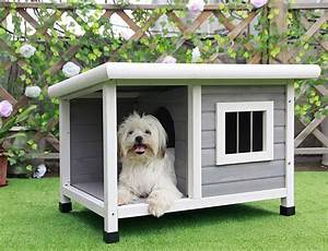 The most adorable dog houses ever some of them you can for Petsfit dog house