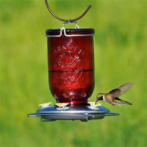 how to make a hummingbird feeder pet 786 jar glass hummingbird