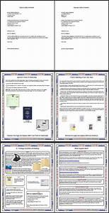 K1 Fianc U00e9 Visa Petition Sample