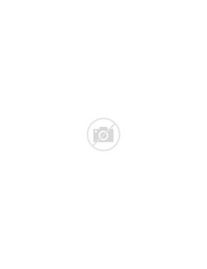 Fold Tri Template Brochure Simple Word Editable