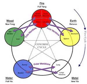 5 Elements and 12 Meridians