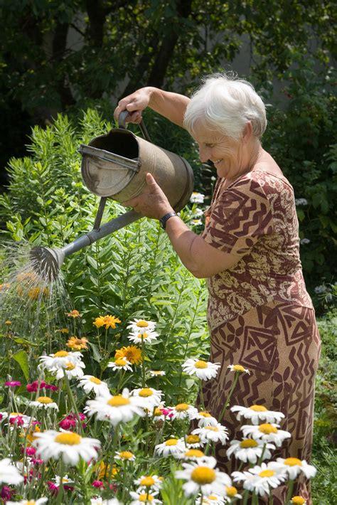 des malades d alzheimer deviennent jardiniers en maison de