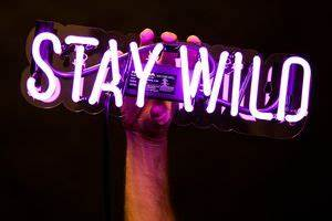 25 best ideas about Custom neon signs on Pinterest