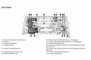 Car Diesel Engine Diagram