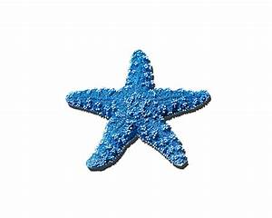 Sea Star Medium Blue png Shower Curtain for Sale by Al