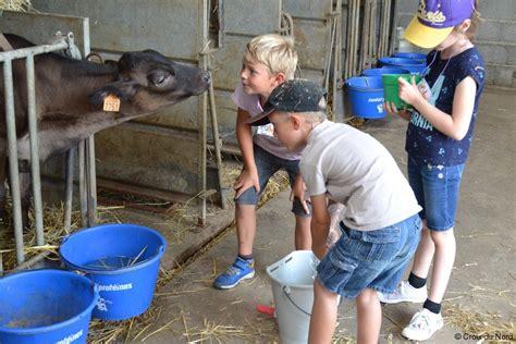chambre agriculture nord lille fêter anniversaire à la ferme dans le nord