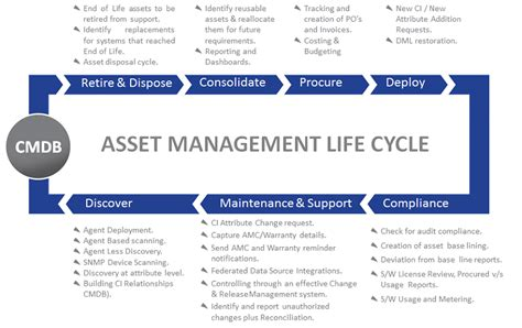 management solution dragon