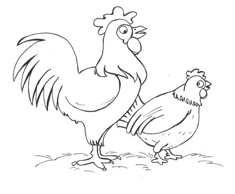 chicken coloring pages  coloring pages  kids
