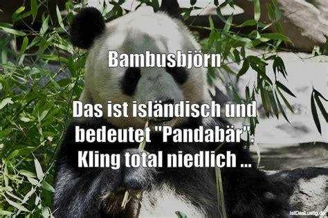 lustige sprueche zum thema panda