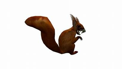 Squirrel Animated Undead Opengameart