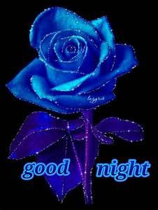 Good night - Kishor Ekatpure - Google+ | HOLIDAY GRAPHICS ...