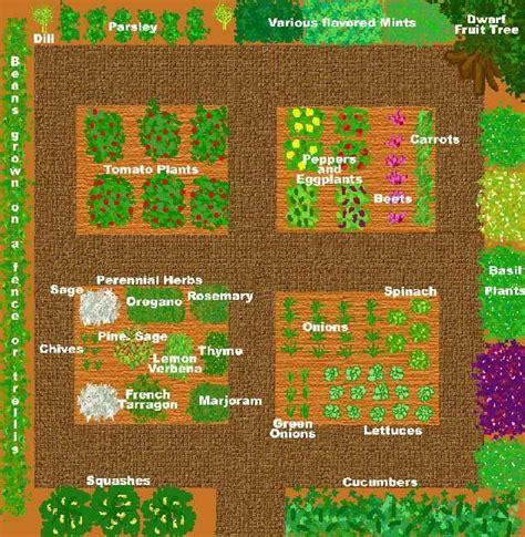 vegetable  herb garden layout kitchen garden designs