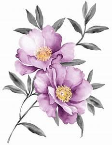 Purple peony watercolor vector - Vector Flower free download