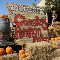 Pumpkin Patch Nj Chester by Chester S Pumpkin Patch Ionoklahoma Online