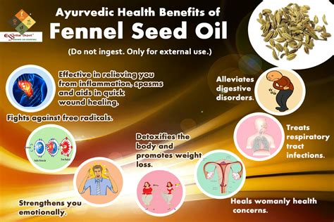 Health Benefits Of Fennel Seed Oil Ayurvedic Oils
