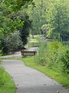 Bench on High Pond - Picture of Kickapoo State Recreation ...