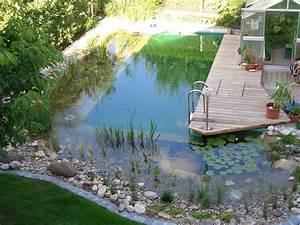 schwimmteich garten pinterest schwimmteich teiche With französischer balkon mit garten schwimmteich