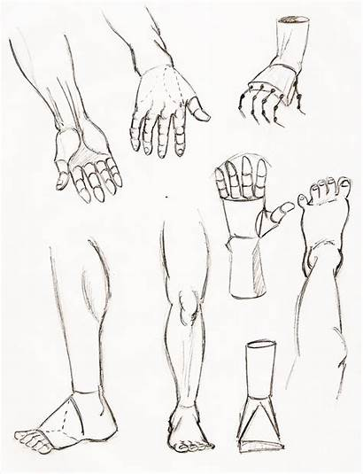 Feet Hands Sketches Drawing Coloring Hand Foot
