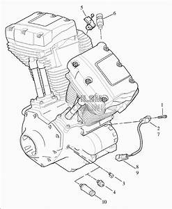 Knucklehead Harley Engine Diagram Harley Twin Cam Engine