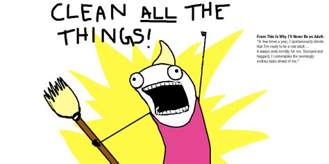 Clean All The Things Meme - it s hyperbole and a little more allie brosh sandpoint magazine
