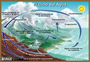 La Ciencia Del Agua Para Escuelas  Diagrama Del Ciclo Del Agua