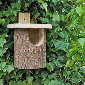 Plan Nichoir Oiseaux : nichoir rouge gorge en bouleau nichoirs pour oiseaux ~ Melissatoandfro.com Idées de Décoration