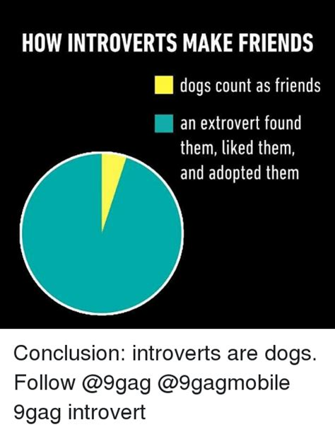 Introvert Meme - how introverts make friends dogs count as friends an