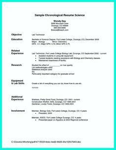 sample resume multiple positions  company resume