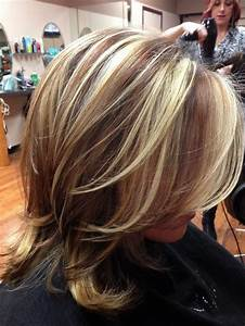 6 Creative Blonde Hair Brown Lowlights
