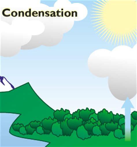 condensation third grade water cycle