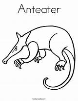 Anteater Coloring Outline Ant Pages Drawing Animal Twisty Noodle Print Twistynoodle Tracing Built California Usa sketch template