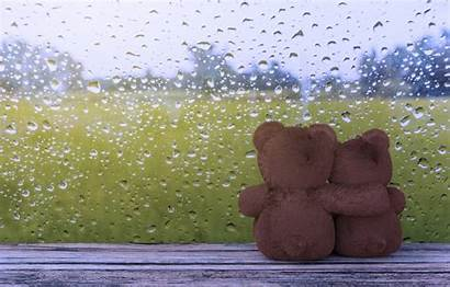 Rain Romantic Teddy Bear Couple Window Drops